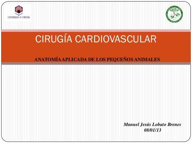 Cirugia cardiovascular veterinaria