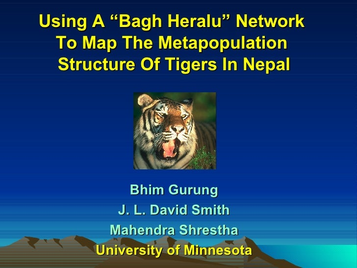"Using A ""Bagh Heralu"" Network  To Map The Metapopulation  Structure Of Tigers In Nepal Bhim Gurung J. L. David Smith Mahen..."