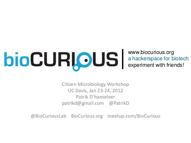 BioCurious Citizen Microbiology Workshop