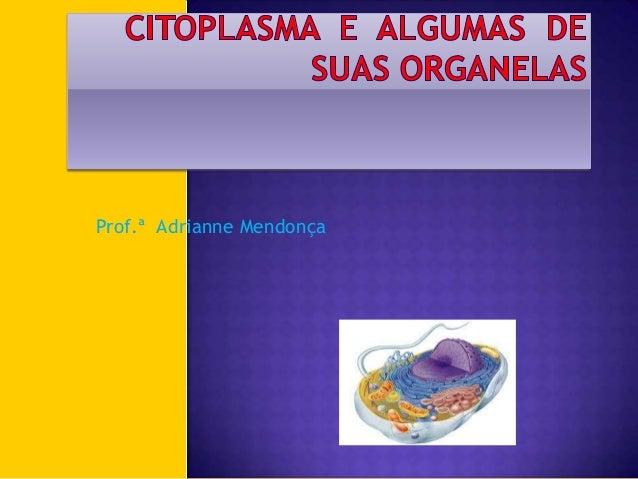 Citoplasma  e  algumas  de suas organelas