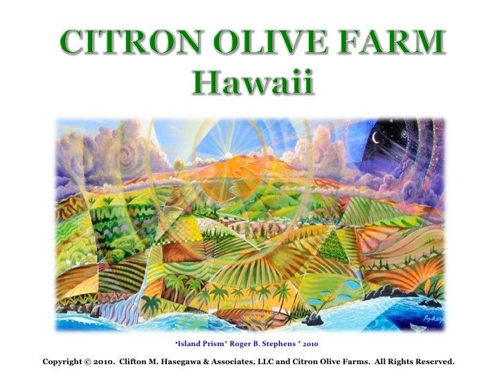 Citron Olive Farm Presentation September 2010