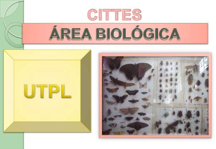 Cittes Area Biologica  Utpl