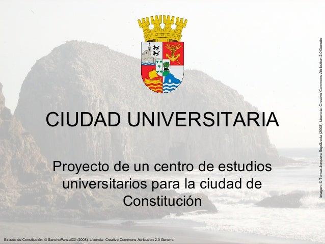 Proyecto de una Universidad para Constitución