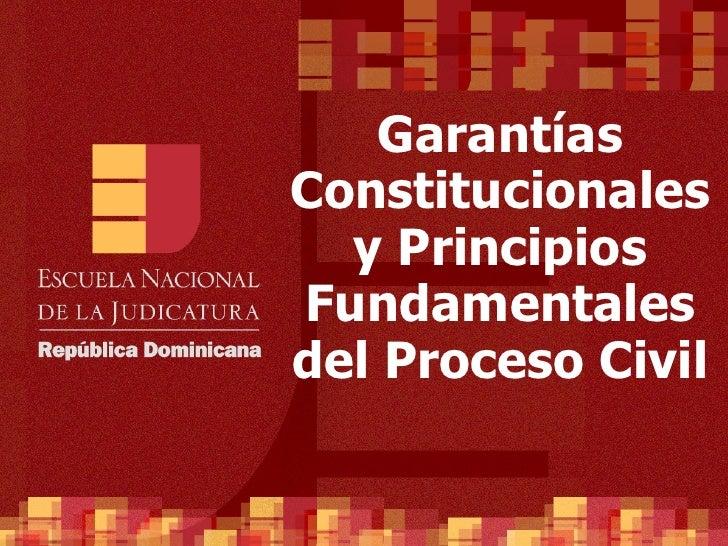 Garan tías Constitucionales y Principios Fundamentales del Proceso Civil
