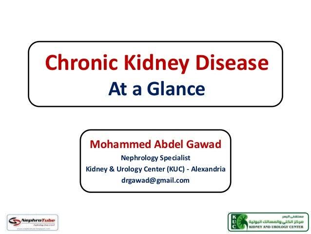 Chronic Kidney Disease At a Glance Mohammed Abdel Gawad Nephrology Specialist Kidney & Urology Center (KUC) - Alexandria d...