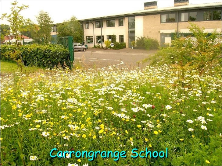 Carrongrange School