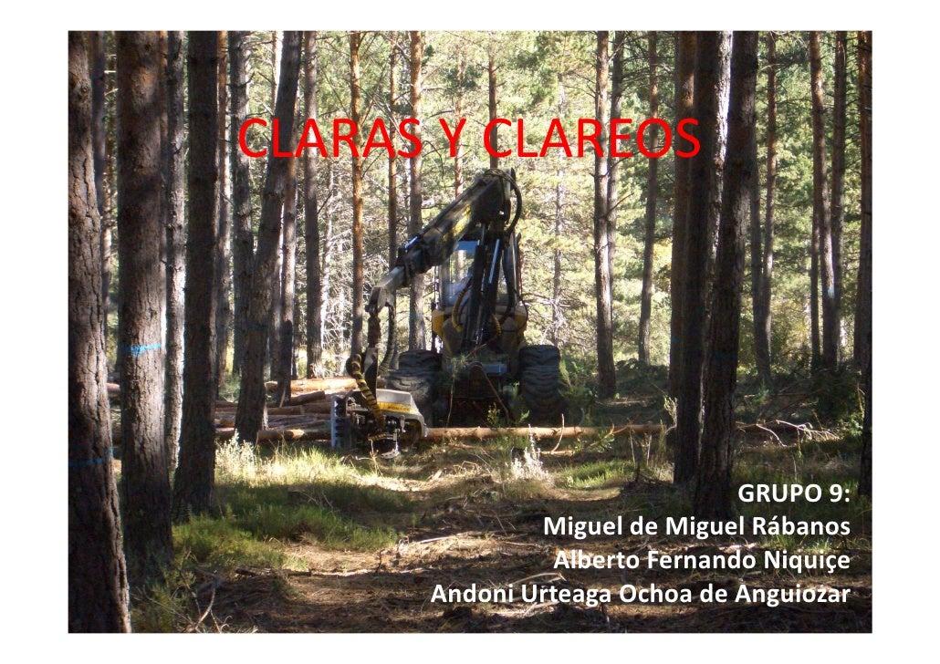 CLARAS Y CLAREOS                               GRUPO 9:              Miguel de Miguel Rábanos                Alberto Ferna...