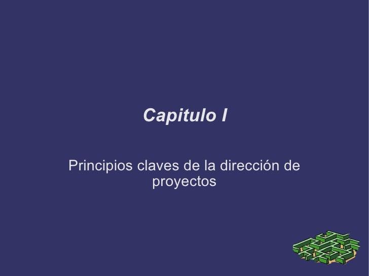 Capitulo I Principios claves de la dirección de proyectos