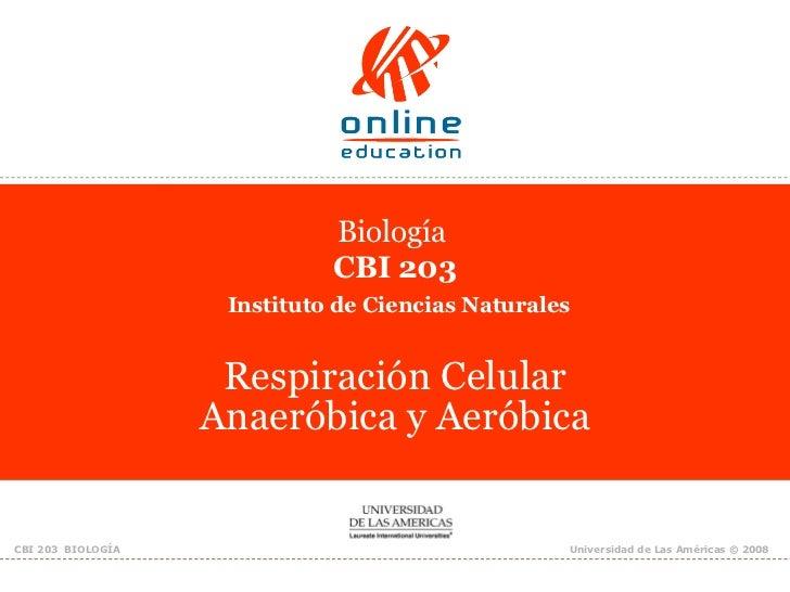 Clase 14. Respiracion Celular Anaerobica Y Aerobica