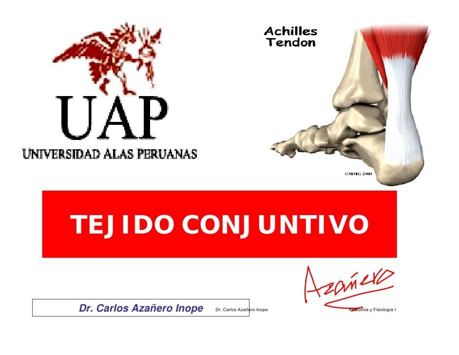 TEJIDO CONJUNTIVO   Dr. Carlos Azañero Inope   Dr. Carlos Azañero Inope   Anatomia y Fisiología I