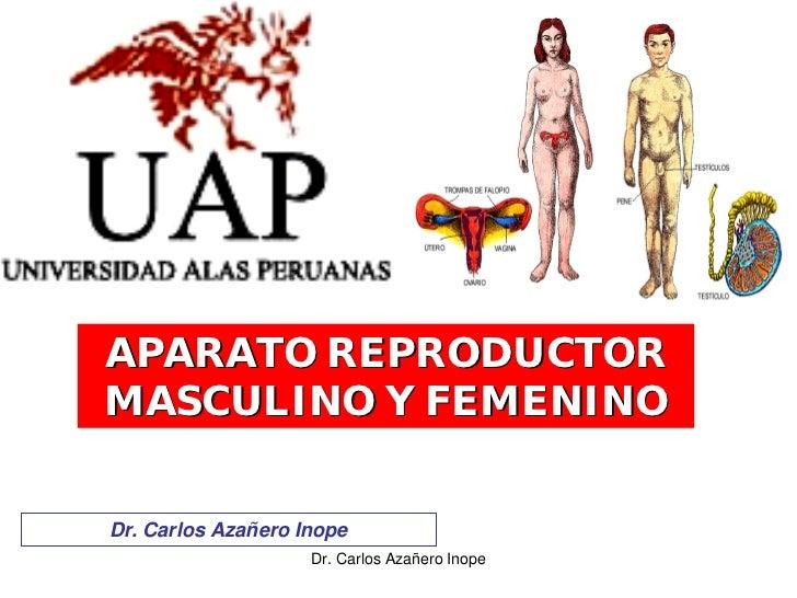 APARATO REPRODUCTOR MASCULINO Y FEMENINO   Dr. Carlos Azañero Inope                     Dr. Carlos Azañero Inope