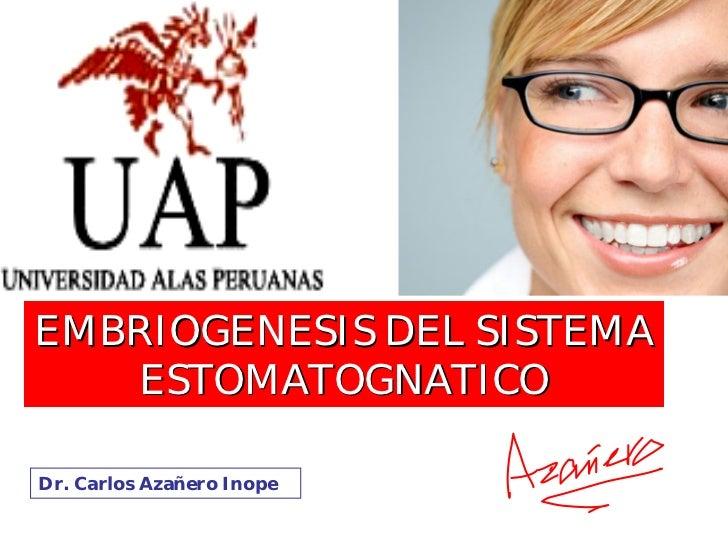 EMBRIOGENESIS DEL SISTEMA    ESTOMATOGNATICO  Dr. Carlos Azañero Inope