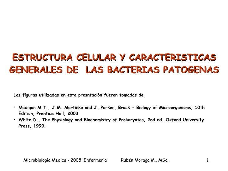 ESTRUCTURA CELULAR Y CARACTERISTICAS GENERALES DE  LAS BACTERIAS PATOGENAS <ul><li>Las figuras utilizadas en esta presntac...