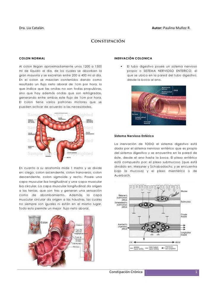 Dra. Lia Catalán.                                                                 Autor: Paulina Muñoz R.                 ...