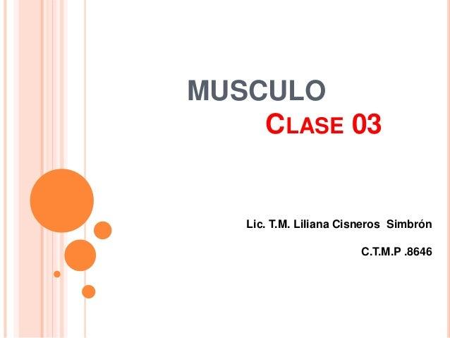 MUSCULO CLASE 03 Lic. T.M. Liliana Cisneros Simbrón C.T.M.P .8646