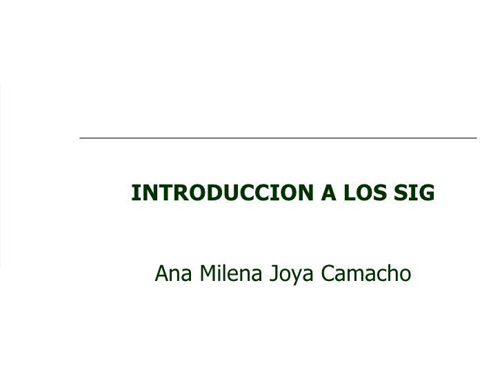 INTRODUCCION A LOS SIG Ana Milena Joya Camacho