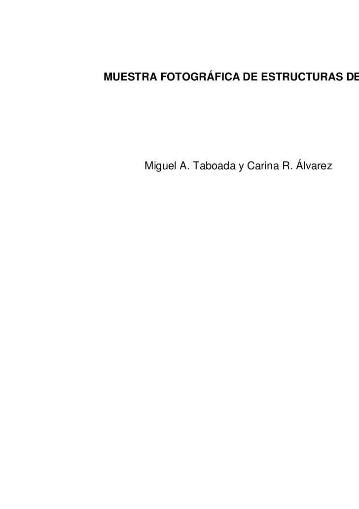 MUESTRA FOTOGRÁFICA DE ESTRUCTURAS DE SUELO     Miguel A. Taboada y Carina R. Álvarez