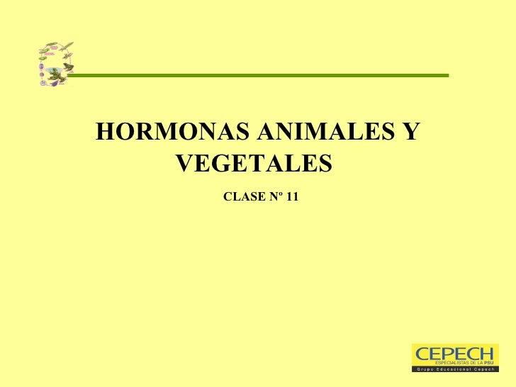 HORMONAS ANIMALES Y VEGETALES     CLASE Nº 11