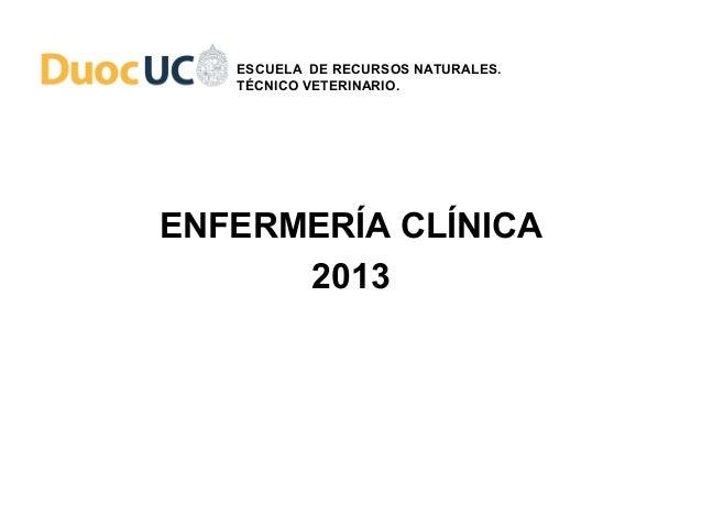 ESCUELA DE RECURSOS NATURALES.   TÉCNICO VETERINARIO.ENFERMERÍA CLÍNICA      2013