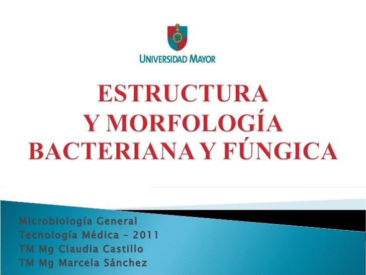 Microbiología General Tecnología Médica – 2011 TM Mg Claudia Castillo TM Mg Marcela Sánchez