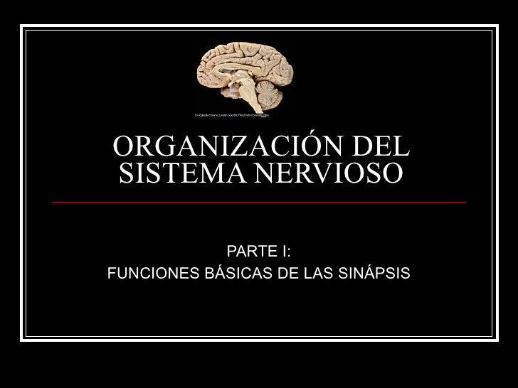 ORGANIZACIÓN DEL SISTEMA NERVIOSO              PARTE I: FUNCIONES BÁSICAS DE LAS SINÁPSIS