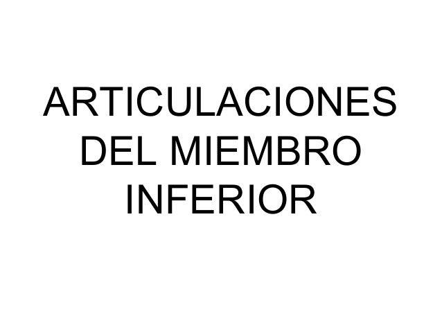 ANATOMIA ARTICULACIONES DEL MIEMBRO INFERIOR