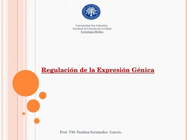 Clase 26 InduccióN Y RepresóN GéNica
