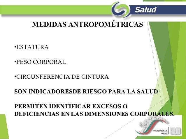 Mediciones antropometicas for Cuales son medidas antropometricas