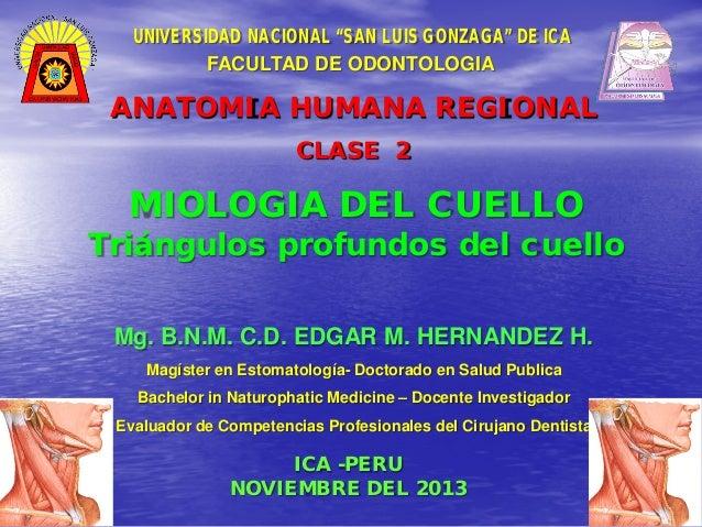 """UNIVERSIDAD NACIONAL """"SAN LUIS GONZAGA"""" DE ICA FACULTAD DE ODONTOLOGIA  ANATOMIA HUMANA REGIONAL CLASE 2  MIOLOGIA DEL CUE..."""