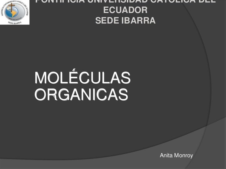 PONTIFICIA UNIVERSIDAD CATOLICA DEL ECUADORSEDE IBARRA<br />MOLÉCULAS ORGANICAS<br />Anita Monroy<br />