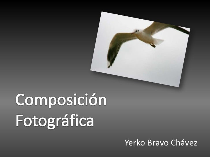 ComposiciónFotográfica<br />Yerko Bravo Chávez<br />