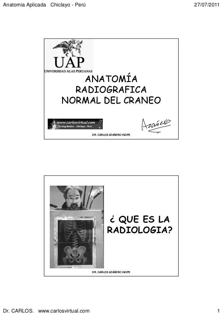 Anatomia Aplicada Chiclayo - Perú                              27/07/2011                           ANATOMÍA              ...