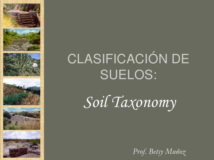 CLASIFICACIÓN DE    SUELOS:  Soil Taxonomy        Prof. Betsy Muñoz