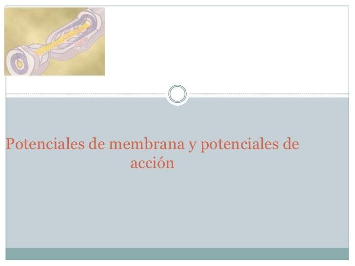 potenciales de membrana y potenciales de accion