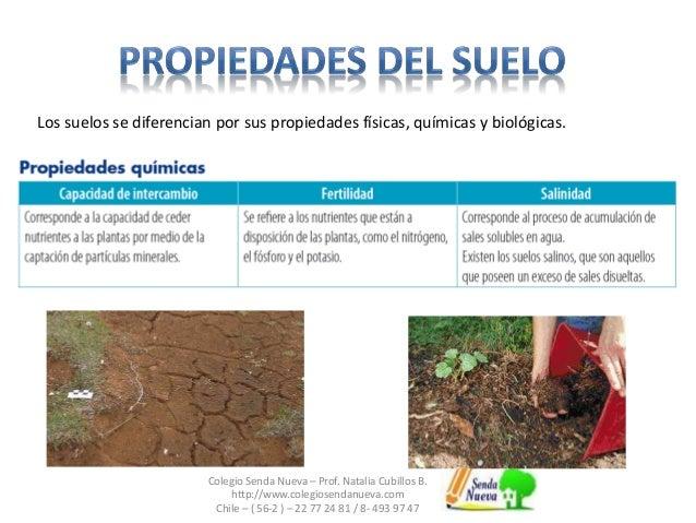 Clase5 suelo for Caracteristicas de los suelos