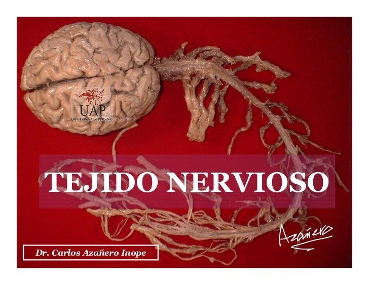 TEJIDO NERVIOSO  Dr. Carlos Azañero InopeCarlos Augusto Azañero Inope                       Dr.                           ...