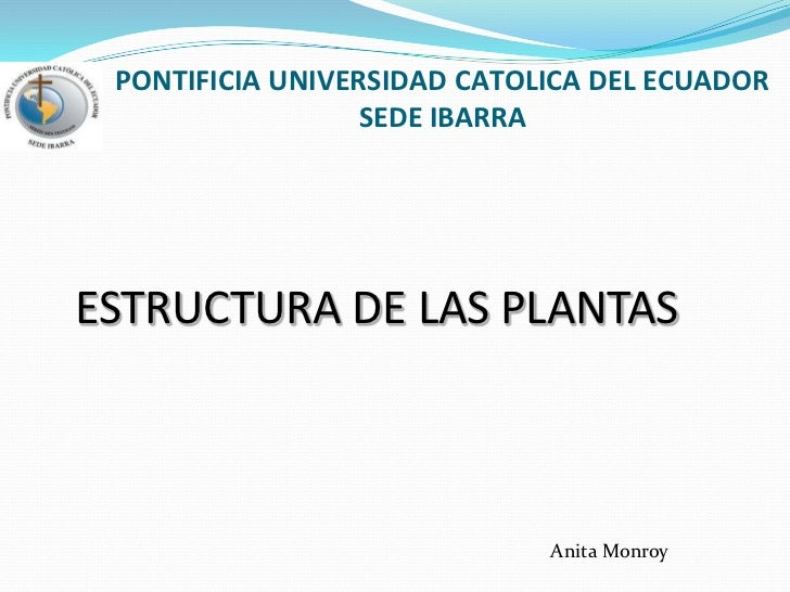 PONTIFICIA UNIVERSIDAD CATOLICA DEL ECUADORSEDE IBARRA<br />ESTRUCTURA DE LAS PLANTAS<br />Anita Monroy<br />