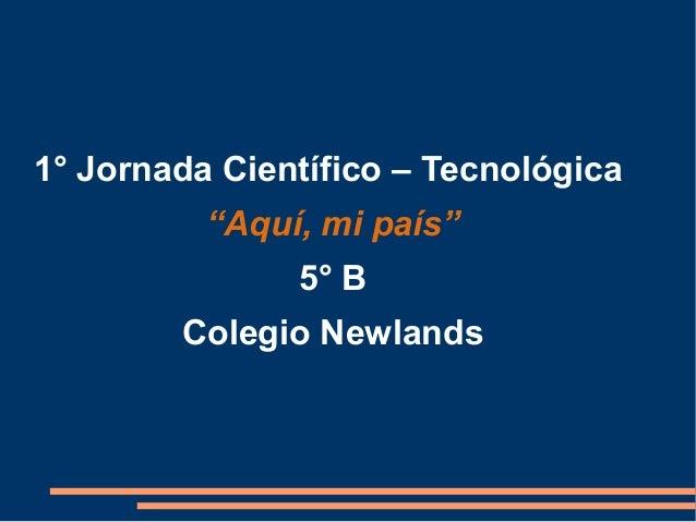 """1° Jornada Científico – Tecnológica """"Aquí, mi país"""" 5° B Colegio Newlands"""