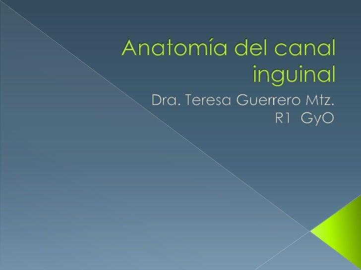 Anatomía del canal inguinal<br />Dra. Teresa Guerrero Mtz.<br />R1  GyO<br />