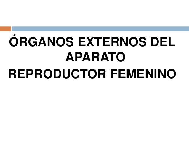 Clase de aparato reproductor femenino
