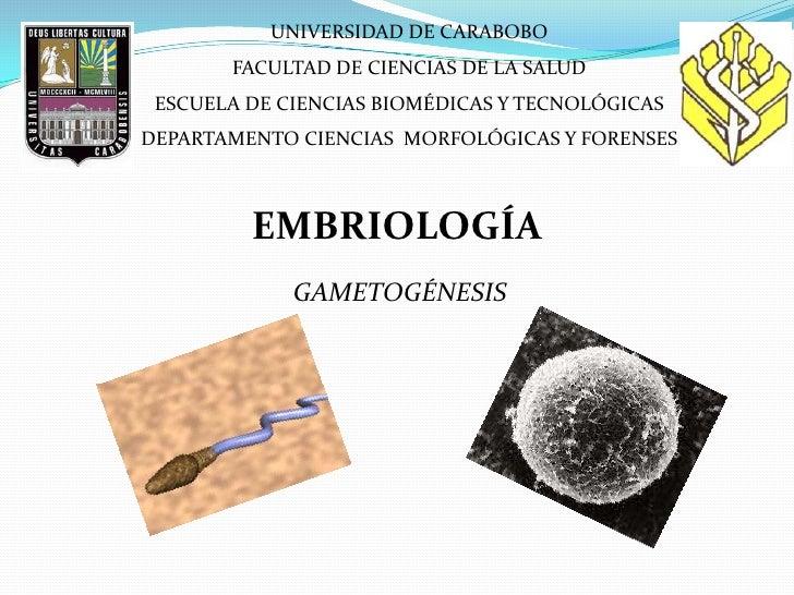 UNIVERSIDAD DE CARABOBO       FACULTAD DE CIENCIAS DE LA SALUD ESCUELA DE CIENCIAS BIOMÉDICAS Y TECNOLÓGICASDEPARTAMENTO C...