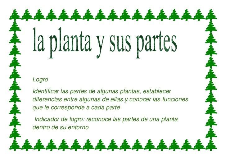 LogroIdentificar las partes de algunas plantas, establecerdiferencias entre algunas de ellas y conocer las funcionesque le...