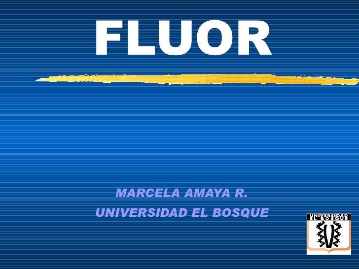 FLUOR MARCELA AMAYA R. UNIVERSIDAD EL BOSQUE