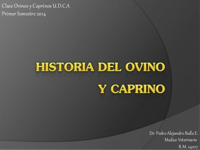 Clase Ovinos y Caprinos U.D.C.A Primer Semestre 2014  Dr. Pedro Alejandro Bulla E. Medico Veterinario R.M. 24027