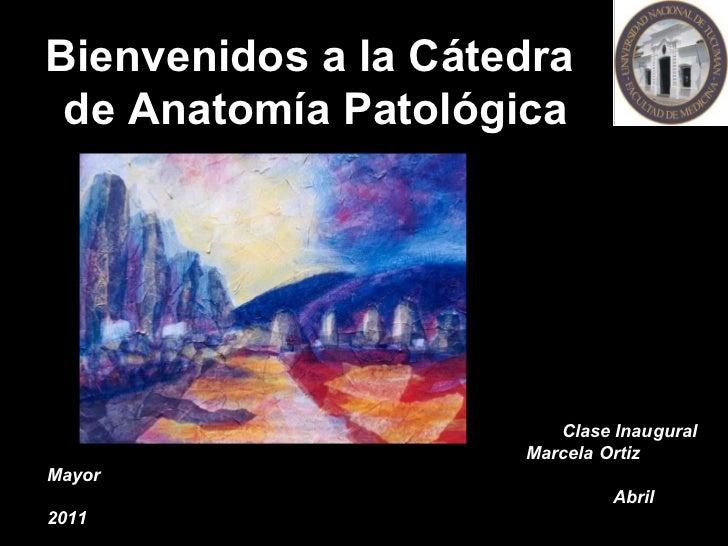 Bienvenidos a la Cátedra  de Anatomía Patológica Clase Inaugural Marcela Ortiz Mayor Abril 2011