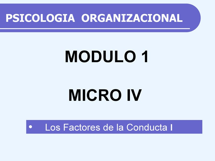 PSICOLOGIA  ORGANIZACIONAL <ul><li>Los Factores de la Conducta  I </li></ul>MODULO 1 MICRO IV