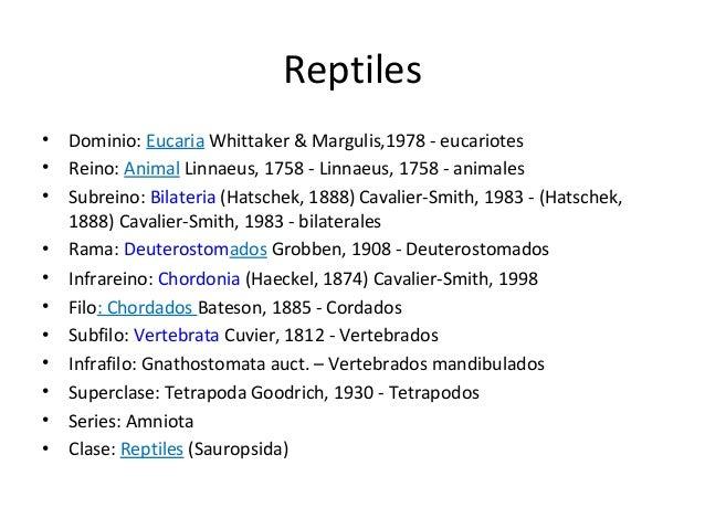 Clase reptiles 2013