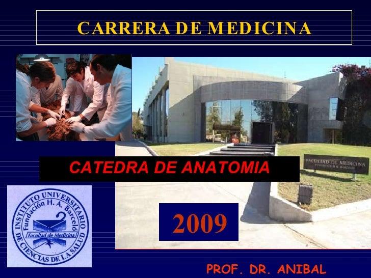 CARRERA DE MEDICINA CATEDRA DE ANATOMIA 2009 PROF. DR. ANIBAL OJEDA