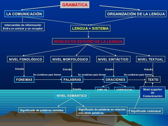 GRAMÁTICA  LA COMUNICACIÓN                                                                       ORGANIZACIÓN DE LA LENGUA...