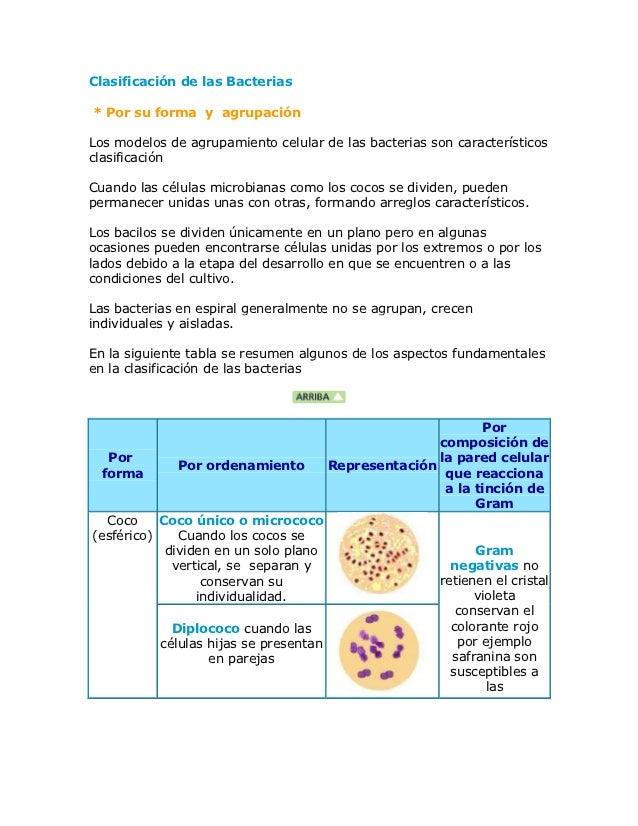 Clasificación de las Bacterias* Por su forma y agrupaciónLos modelos de agrupamiento celular de las bacterias son caracter...
